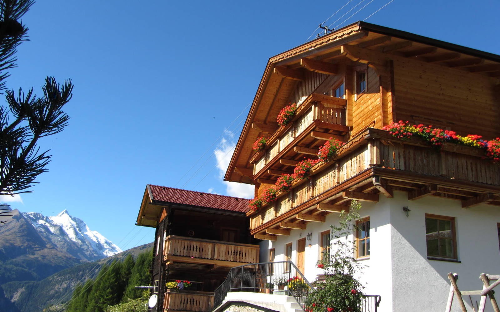 Der Seppenbauerhof mit traumhaftem Bergpanorama